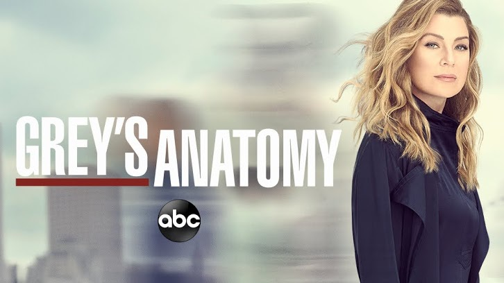 Grey's Anatomy Season 16 Episode 12 Subtitle (English Srt) Download