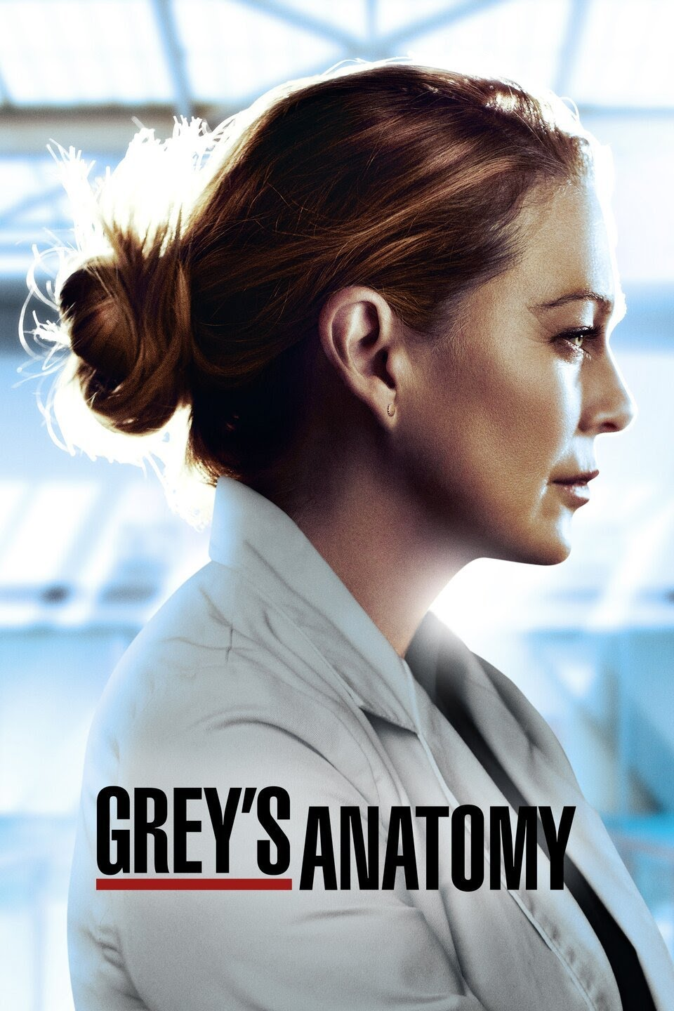 DOWNLOAD Greys Anatomy Season 17 Episode 10 (S17E10) Movie Series Subtitles
